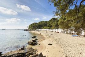 Petite plage sauvage à Noirmoutier - Parenthèse Océan Voyages